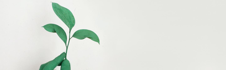 ESG, il caso DWS avvia una riflessione sulla sostenibilità